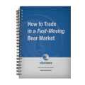Wayne Gorman - How to Trade in a Fast-Moving Bear Market